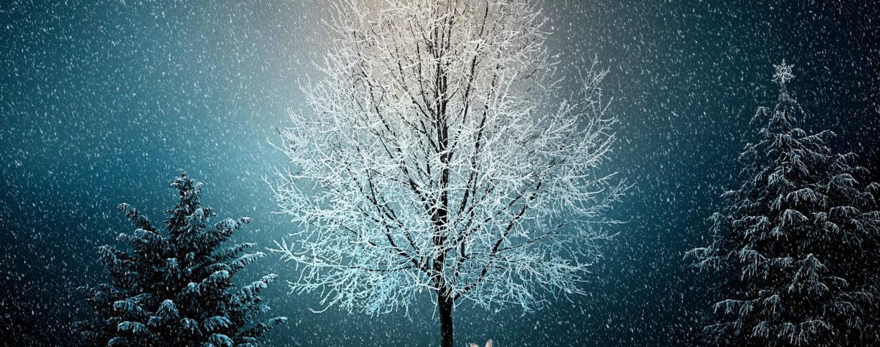 Gnadenlose statt gnadenbringende Weihnachtszeit? Tipps zum Durchhalten